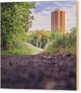 East Bank Trail Wood Print