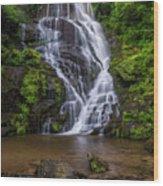 Eastatoe Falls Wood Print