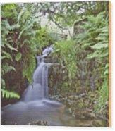 Edale River Wood Print