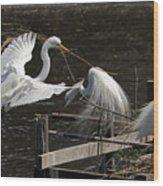 Egret 43 Wood Print