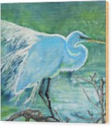 Egret In The Summer Breeze  Wood Print