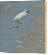 Egret Walking Up The Beach Wood Print