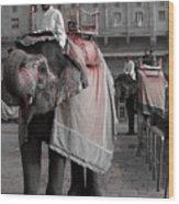 Elephant At Amber Fort Wood Print