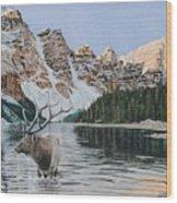 Elk In Moraine Lake Wood Print