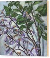 Empress Tree Wood Print