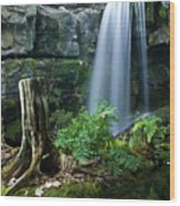 Enchanted Waterfall Wood Print