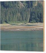 Endicott Glacier Area  Wood Print