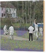 England Club Cricket Wood Print