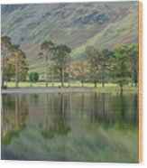 England, Cumbria, Lake District National Park Wood Print