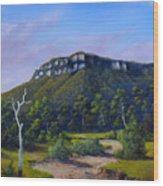 Escarpment Road Wood Print