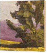 Evergreen Wood Print