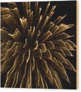 Explosive Flowers 1 Wood Print