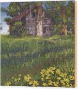 Fairplay Farmhouse Wood Print