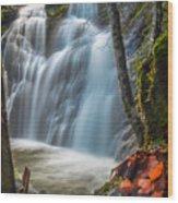 Fairy Falls Wood Print