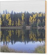 Potty Pond Reflection - Fall Colors Divide Co Wood Print