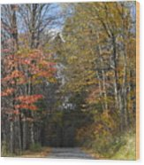 Fall Lane Wood Print