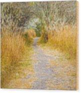 Fall Pathway 3 Wood Print
