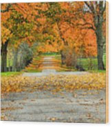 Fall Road Wood Print