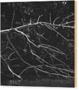 Fallen Warrior Wood Print
