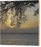 Farewell Sunset Wood Print