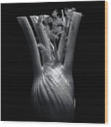 Fennel Wood Print