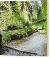 Fern Canyon, Redwood National Park Wood Print