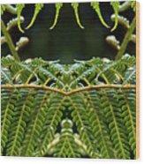 Fern Panorama Wood Print