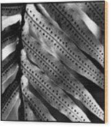 Fern Spores Wood Print