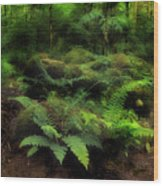 Ferns Of The Forest Wood Print