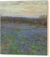 Field Of Bluebonnets At Sunset Wood Print
