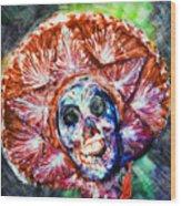 Fiesta Sombrero  Wood Print