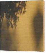 Film Noir Alfred Hitchcock Shadow Of A Doubt 1943 1 Shadow Wall Casa Grande Arizona 2004 Wood Print