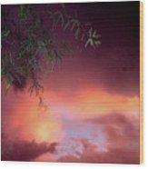 Film Noir Debra Winger Theresa Russell Lois Smith Black Widow 1987 Sunset Casa Grande Arizona 2005 Wood Print