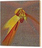 Firefly Wood Print