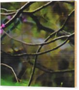 First Sign Of Spring Wood Print by Gerlinde Keating - Galleria GK Keating Associates Inc