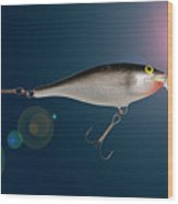 Fishing Lure  Wood Print