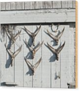 Fishing Shack Wood Print