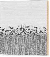 Flock Wood Print