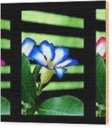 Floral Triptych Wood Print