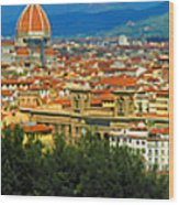Florence, Italy Panoramic Wood Print