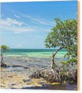 Florida Keys Mangrove Reef Wood Print