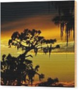 Central Florida Sunset Wood Print