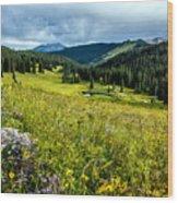 Flowering Colorado Mountain Meadow Wood Print