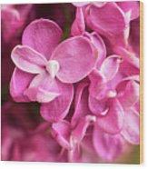 Flowers - Freshly Cut Lilacs Wood Print