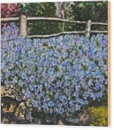 Flowers On The Rock Wall Wood Print