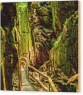 Flume Gorge Wood Print
