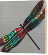 Fly Away Baby Dfly Wood Print
