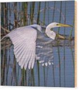 Flying Egret Wood Print