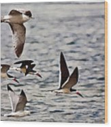Flying The Inter-coastal - T Wood Print