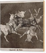 Fool's Folly Wood Print